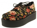 Flower Creepers